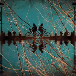 tree street silhouette mirrormania people
