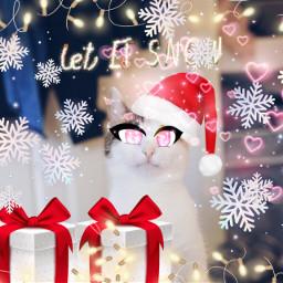 cat christmas snowflakes hat christmashat freetoedit ecfestivepets festivepets