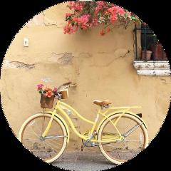 yellow yellowaesthetic bike pink flowers freetoedit