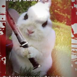 killerbunny bunny knife blood