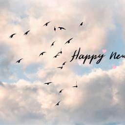 freetoedit happynewyear birdsinflight flockofbirds clouds