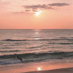 goodbye2019 nature beachmood lateafternoon sunsettime freetoedit