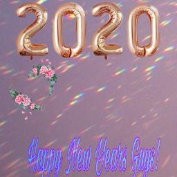 freetoedit 2020 newyearnewmeselfie srcnewyear2020 newyear2020