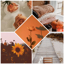 freetoedit (null) ccnewyearsresolution newyearsresolution #moodboard