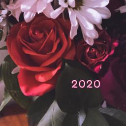 2020 newyear happynewyear january photography freetoedit