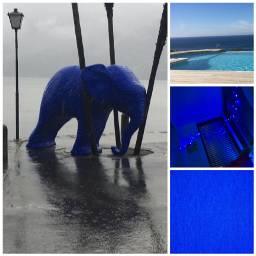 freetoedit blau blue elefant wasser schön ccblueaesthetic blueaesthetic
