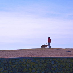 freetoedit walkway hilltop man dog