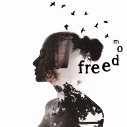 freetoedit freedom stickers cozyeffect filter minimalfilter