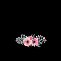 frame flowerportrait freetoedit
