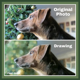 freetoedit drawing myphoto dog hound