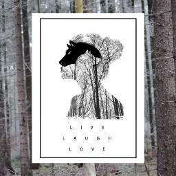 freetoedit wolfs wood lupi foresta
