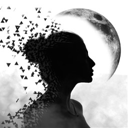 freetoedit silhouette dispersion moon smoke ircelegantsilhouette elegantsilhouette