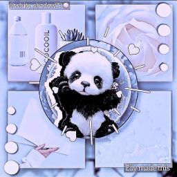 savetheplanetcontest savetheplanet panda cute