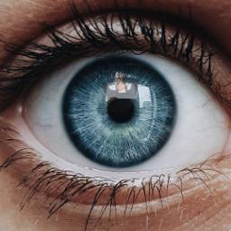 blueeye eye blue eyelashes girl freetoedit