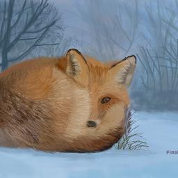 freetoedit fox snow winter animal