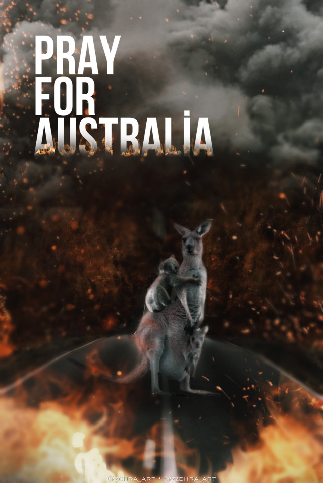 Pray for Australia (created with PicsArt ) #prayforaustralia #australia #kangaroo #kuala #fire #freetoedit