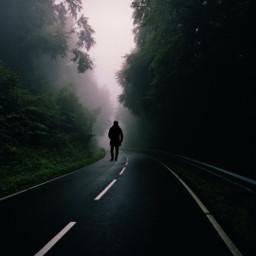 freetoedit myedit outdoors natute road scary