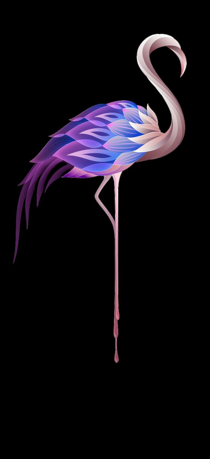 #flamingo #sticker