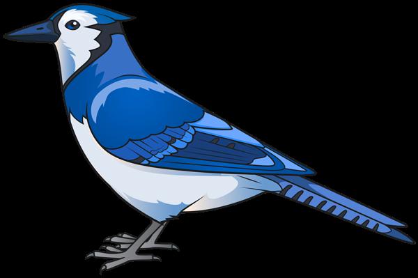 #animals #animal #trend #moodboard  #love #nature #sticker #stickers #ftestickers #bird #birds #fly #pigeon #pigeons #peces #freedom #blue #bluebird #freetoedit