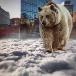 vipshoutout keepitsimple123 supersizeit chicago bear freetoedit