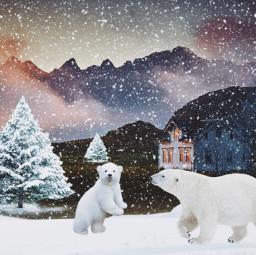 freetoedit vipaziz bear snow winter