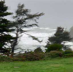 wind storm ocean rain