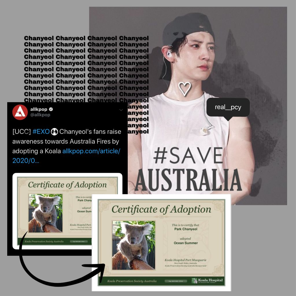 🛑🛑 READ THIS🛑🛑  Soon it will be #EXO @weareoneEXO DO & KAI Birthday,so join us in this charity project & pls donate to help us in our mission to save wild animals living in Australia.We will donate under Kai & DO's name to Wildlife Warriors(Australia Zoo Donation)  Link: https://paypal.me/pools/c/8lulYo7WSo    #EXO #KPOP #snow #2020 #newyear  #kpopedits #kpoplove #kpopwallpaper #kpopsticker #kpopismylife #kpopbrush #kpopfan #soft #cute #bts #blackpink #twice #nct #got7  #freetoedit