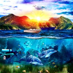 freetoedit sea ocean dolphins fish