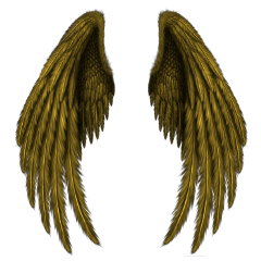 freetoedit wings yellow wing stickers