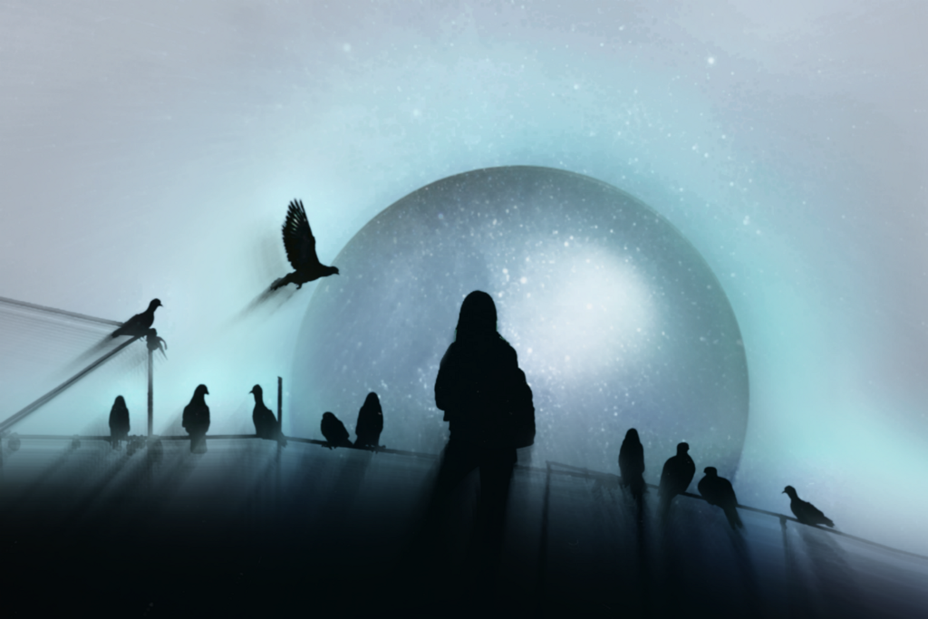 A surreal edit made from the photography gallery and Artist of the Week #vipshoutout @tanpyad A gallery full of original and beautiful photography. You will enjoy your visit. Galaxy overlay provided by Picsart@freetoedit  #surreal #fantasy #birds #galaxy #blue      #freetoedit