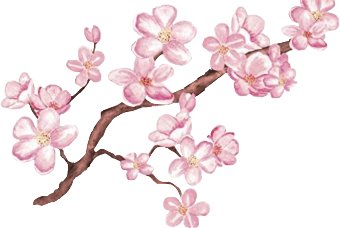 #flowers #cherryblossoms #aesthetic #cute #pink #pinkflower  #freetoedit