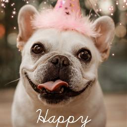 freetoedit birthday happybirthday template pink