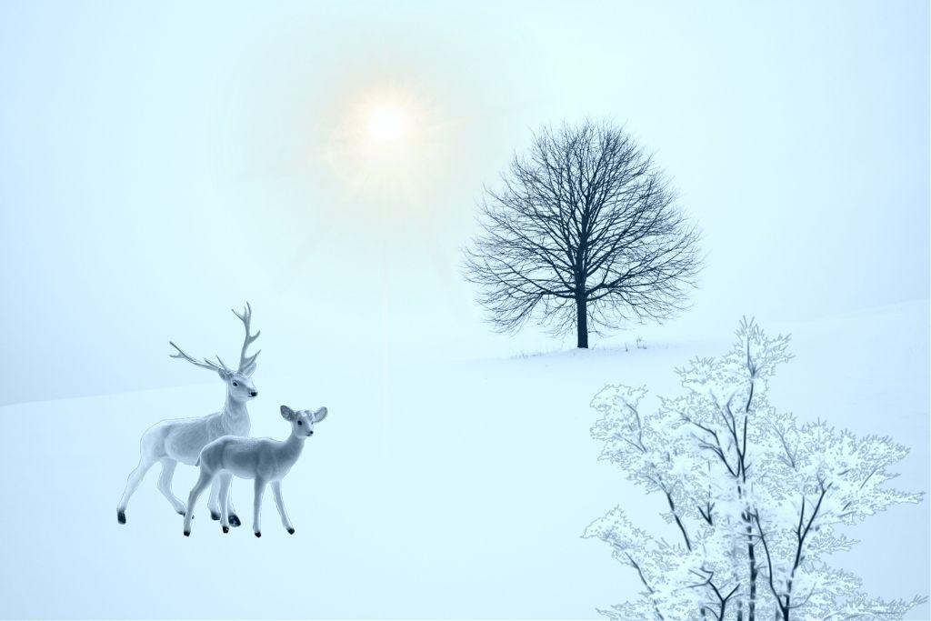#freetoedit @ionyphotography #mycreation #winter #deers #landascape