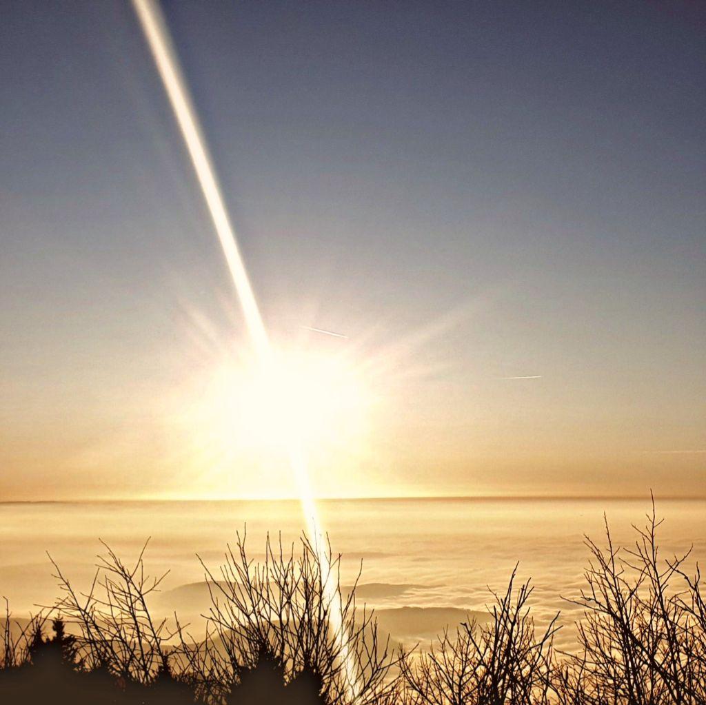 #freetoedit #naturephotography #fog #winter #mountains #landscape #sunburst #sunlight #trees #earth #foggymountain  #hill #dreamlike #beautyfullcolours #viewpoint #view #natur #relaxation #rimixit #picsart #myedit #wonderland #photography #myphotography