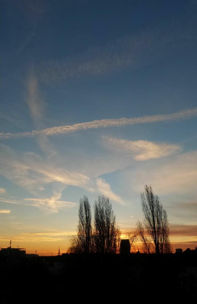 #freetoedit #photography #myphotography #sunrise #sky #clouds #horizon