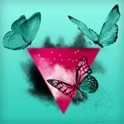 freetoedit triangle butterfly splash 4asno4i ftestickers