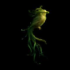 vogel bird yellow green freetoedit