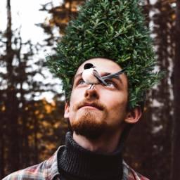 freetoedit nature wood bird men