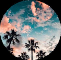 clouds california freetoedit scclouds