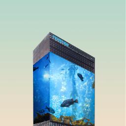 freetoedit fishtank 3dart 3deffect surreal