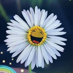 daisy flower stickers happiness freetoedit