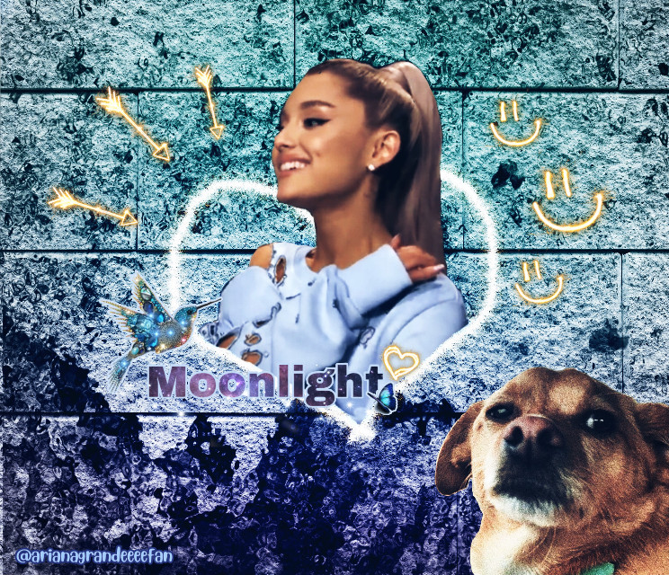 #freetoedit #arianagrande #ariana #grande #toulouse #toulousegrande #fireworksbrush #smiley #heart #drawing #stones #blue #purple