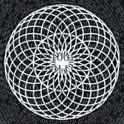 sacredgeometry binary blackandwhite geometry digital freetoedit