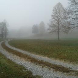freetoedit foggy fog path winter
