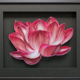 freetoedit flower pink picsart photography