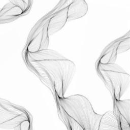 freetoedit white background whitebackground araceliss