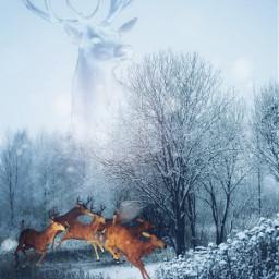 freetoedit vipshoutout deer winter fairy
