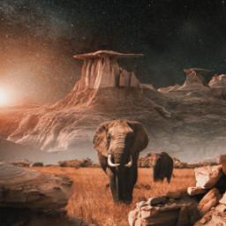 freetoedit background elephants nature mountain