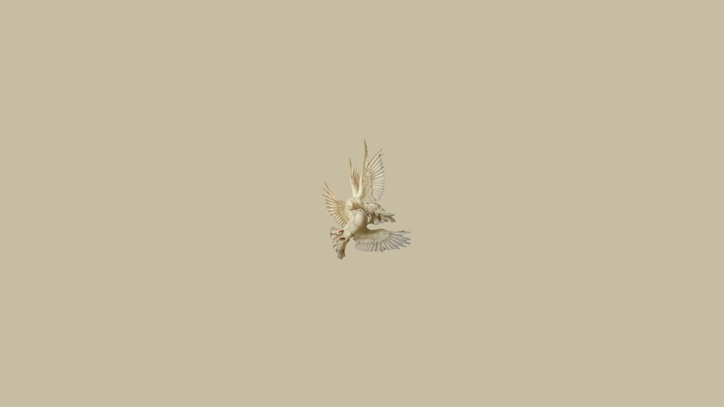 Aesthetic Dove Doves Beige Image By Simplenesss