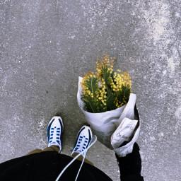 freetoedit flowers nature interesting photography